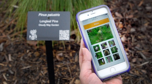 plants-map_app-1
